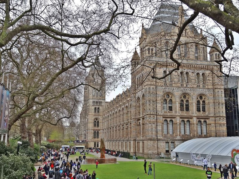 Front Of The Natural History Museum London