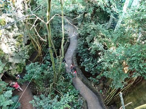 Rainforest House Schönbrunn